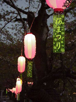 Festival lanterns and strips